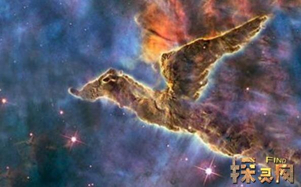 宇宙中最恐怖的生物,比银河系还大的生物可能真的存在